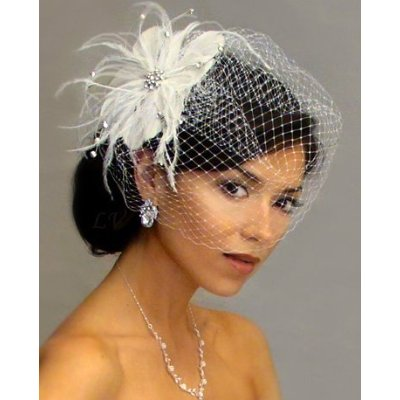 Birdcage wedding veil for second wedding